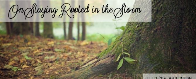 Rooted in the Storm