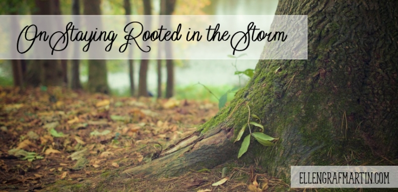 On Staying Rooted in the Storm {Guest Post}